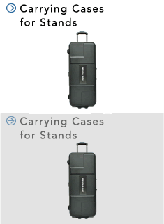 carrying_case